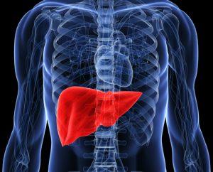 درمان تخصصی کبد چرب و هپاتیت