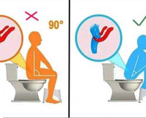photo 2017 10 28 16 40 49 495x400 - توالت ایرانی یا فرنگی؟